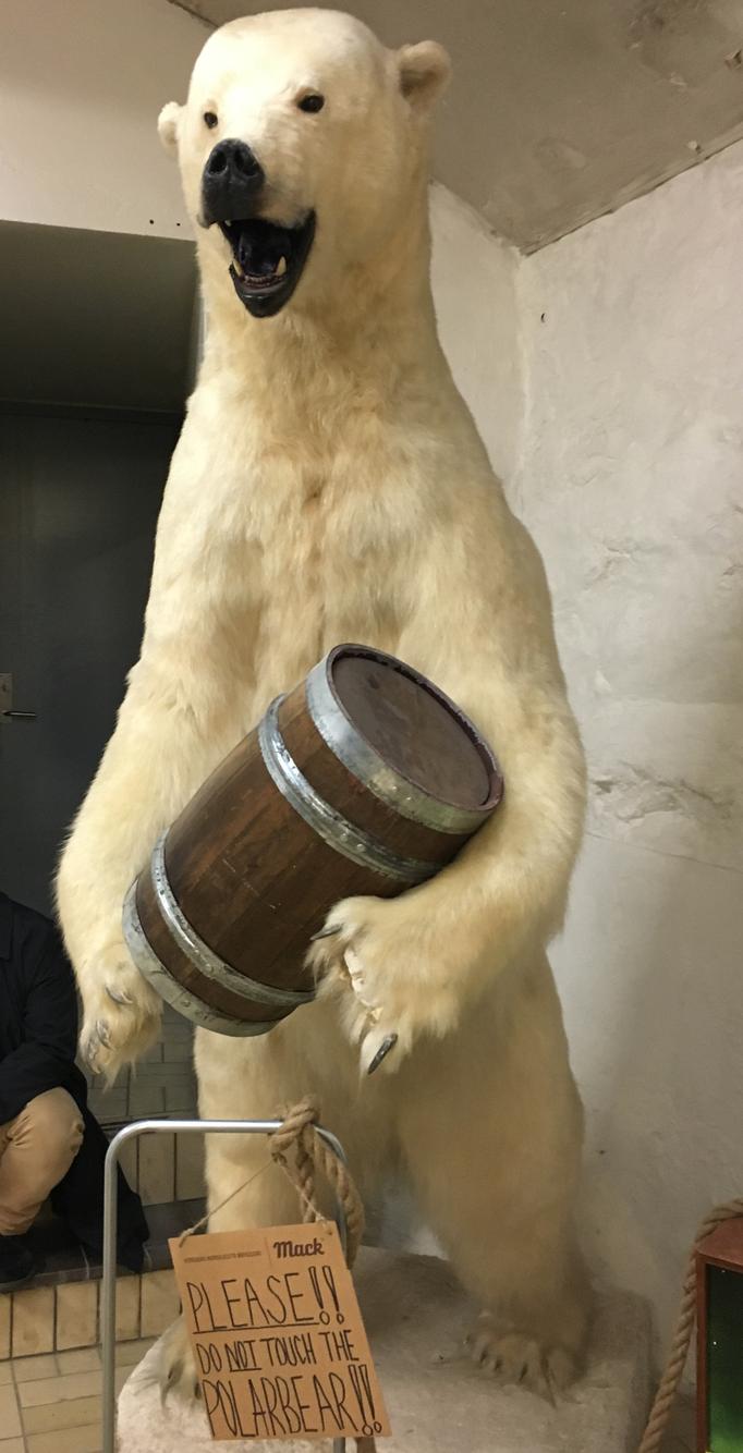 polar bear mack brewery